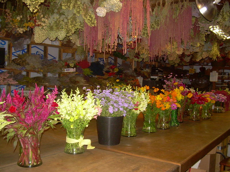 Flowers lining tables for bouquet making